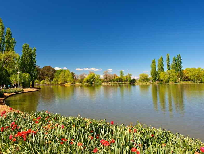 What's on in Canberra this spring